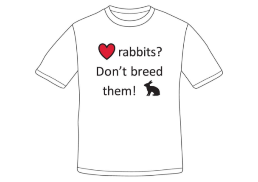Design 1 Love Rabbits.png
